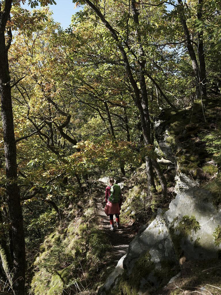 ADAC Reise Magazin Wildnistrail Eifel 2019